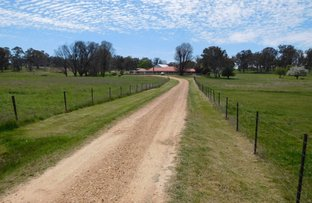 Penfield, 1014 Boorolong Road, Armidale NSW 2350