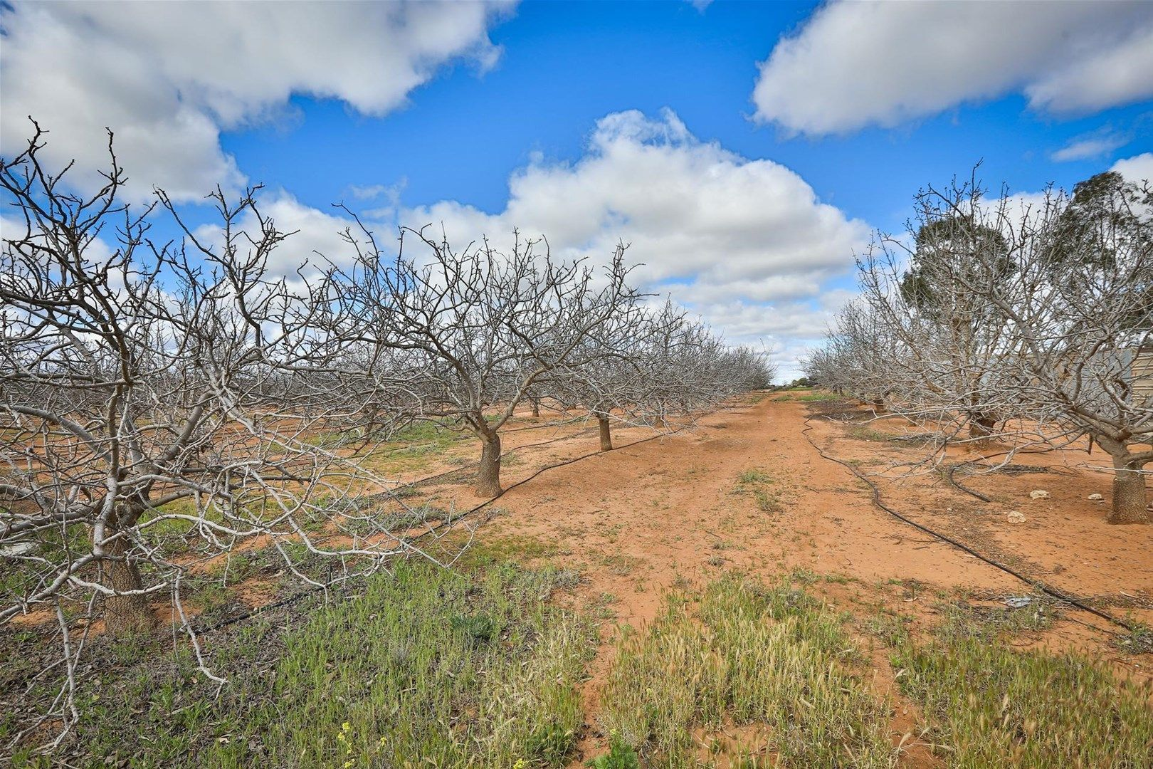 Lot 4 Barnetts Road, Red Cliffs VIC 3496, Image 0