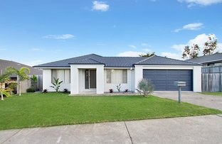 Picture of 6 Billinghurst Crescent, Upper Coomera QLD 4209