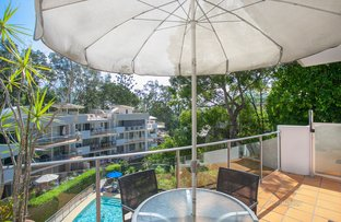 Picture of 23/24 Little Cove Rd, Noosa Heads QLD 4567
