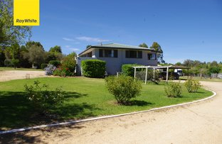 Picture of 244 Old Bundarra Road, Inverell NSW 2360