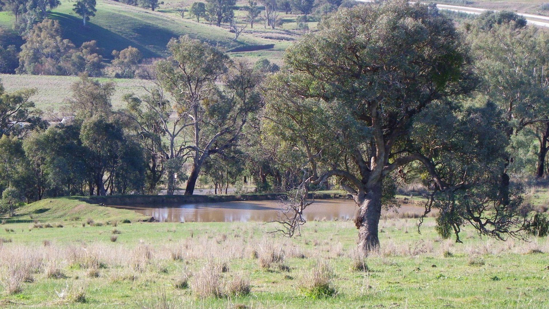 Woomargama NSW 2644, Image 1