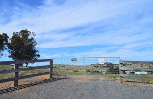 Picture of Lot 20/116 Mulwaree Street, Tarago NSW 2580