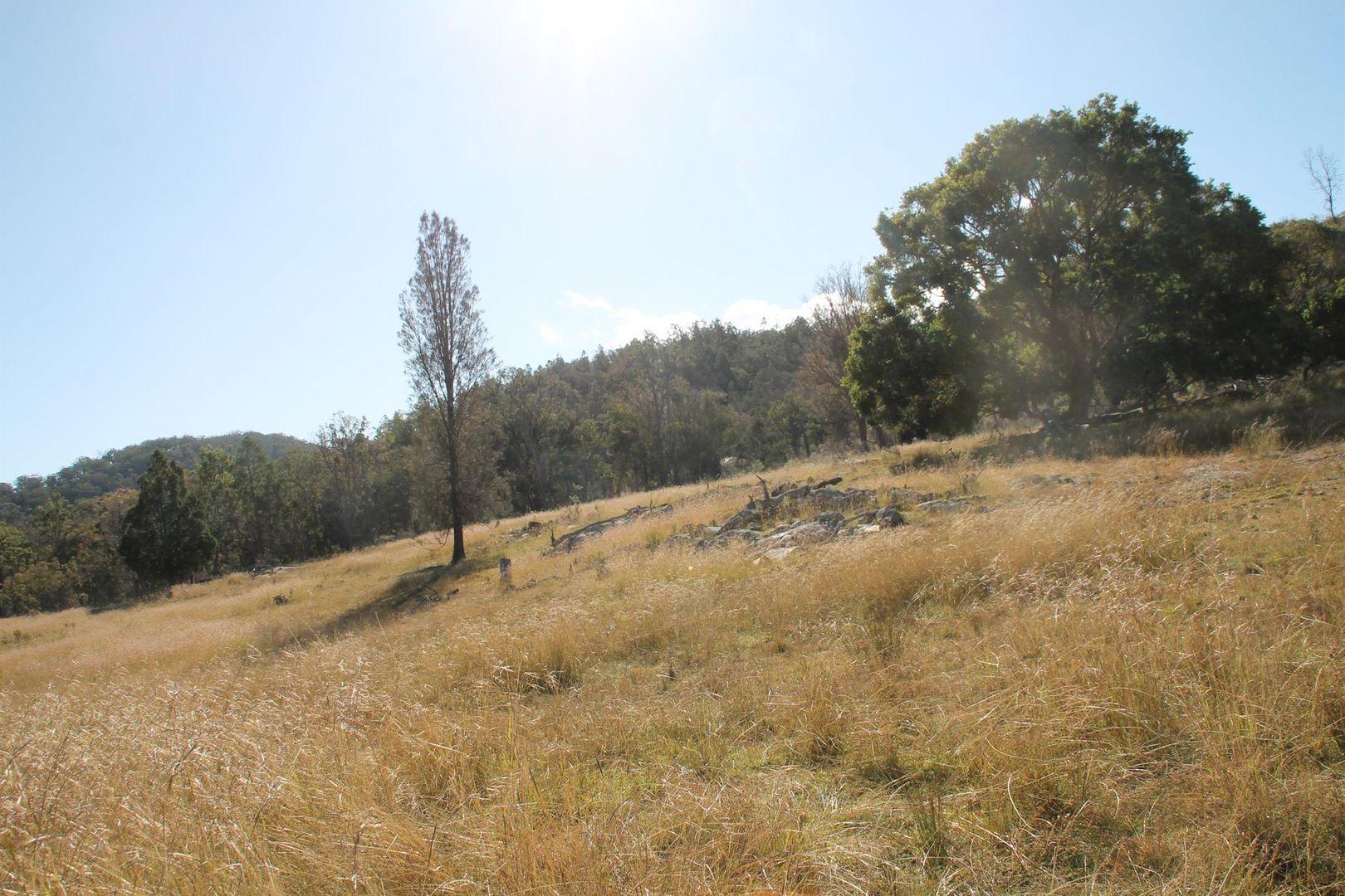 Lot 53 Gunyah Road, Tenterfield NSW 2372, Image 2