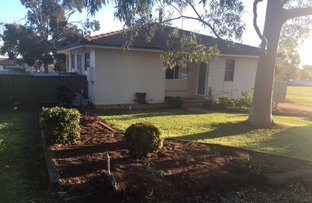 Picture of 50 Wirilda Street, Leeton NSW 2705