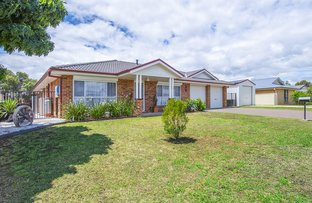 Picture of 13 Silky Oak Close, Muswellbrook NSW 2333