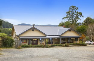 Picture of 1390 Myers Creek Road, Toolangi VIC 3777