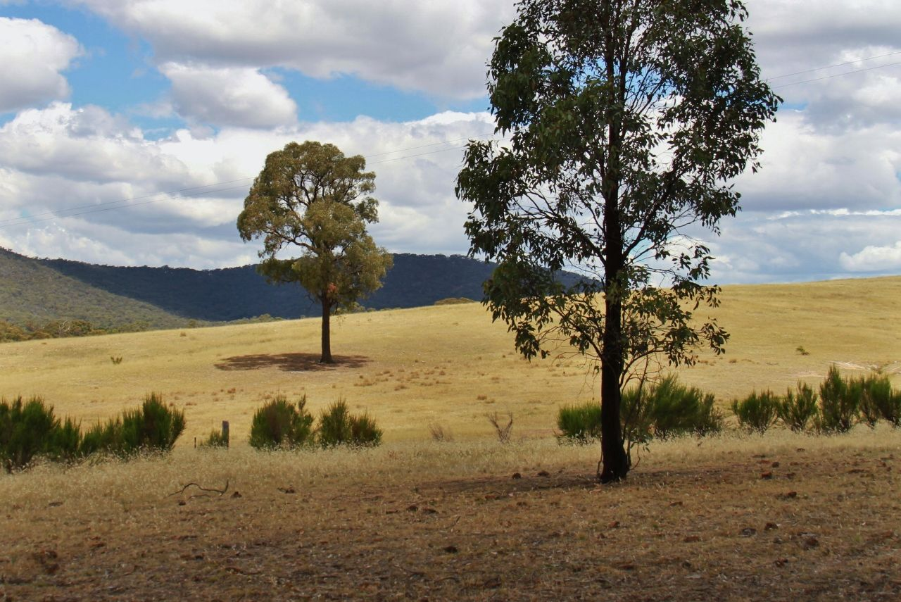 Lot 3, 58 Drummond Road, Heathcote VIC 3523, Image 0