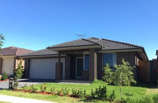 Picture of 29 Tweed Street, The Ponds NSW 2769