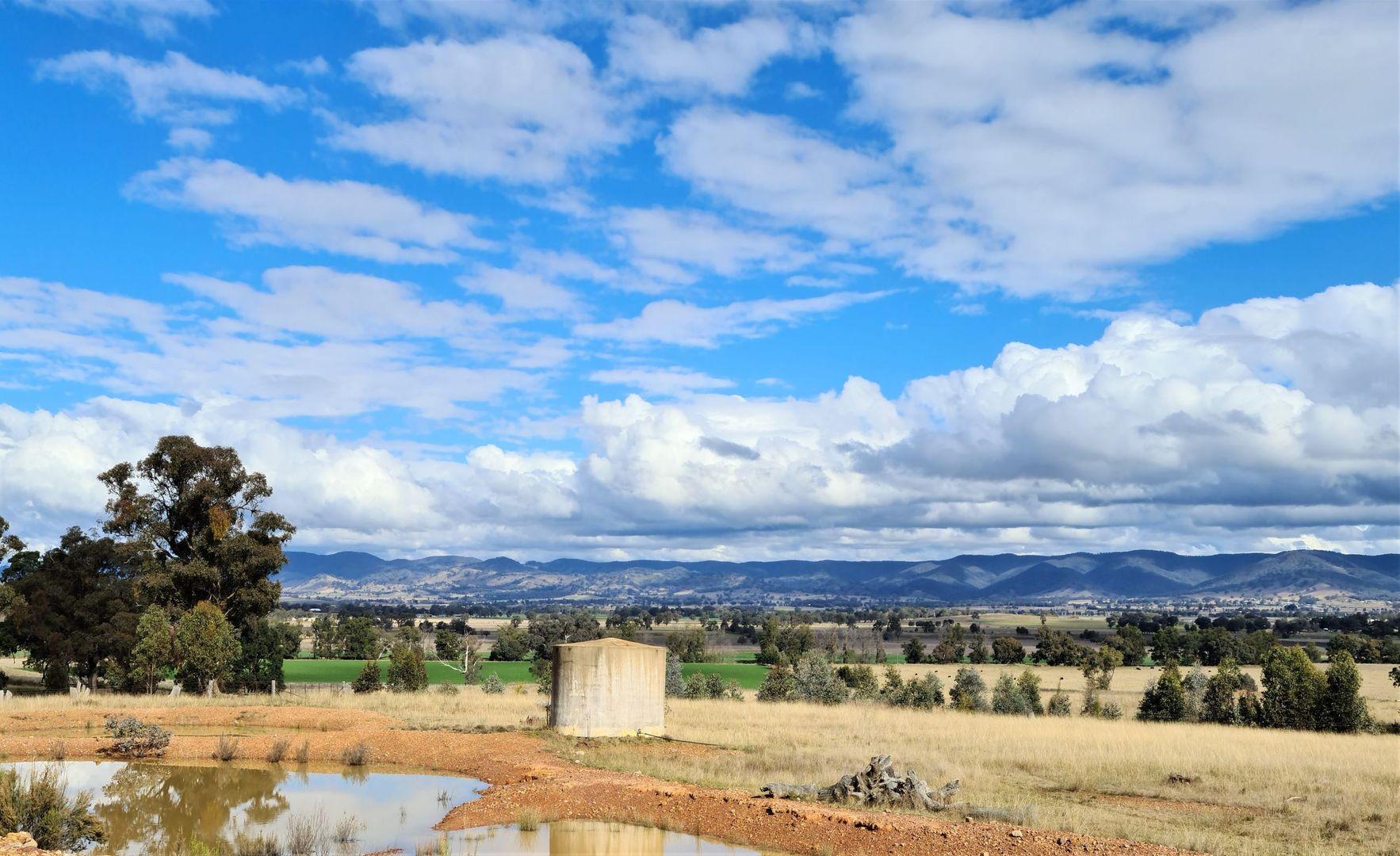 280 EDGELL LANE, Buckaroo NSW 2850, Image 2