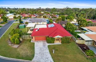 Picture of 19 Ibis Circuit, Forest Lake QLD 4078