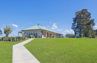 Picture of 1131 Minimbah Road, Minimbah NSW 2312