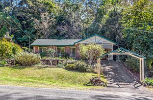 Picture of 11 Ohia Court, Tamborine Mountain QLD 4272