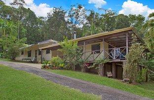 Picture of 1764 Numinbah Road, Chillingham NSW 2484