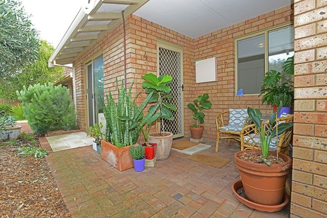 Picture of 4/41 Point Walter Road, BICTON WA 6157