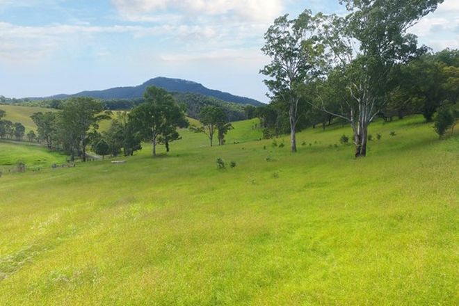 Picture of Lot 2 Nulla Nulla Creek Road, BELLBROOK NSW 2440