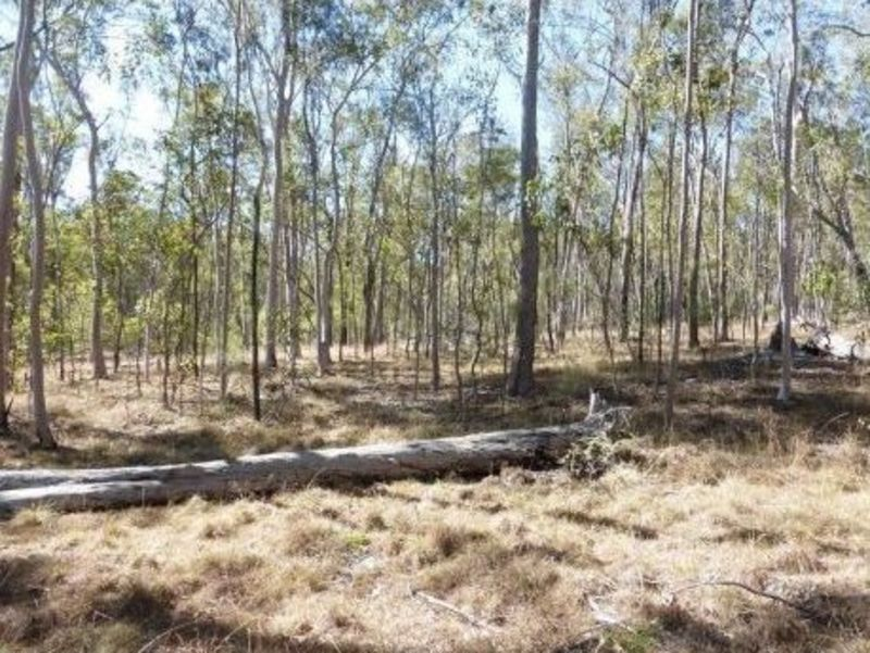 357 Power Road, Widgee QLD 4570, Image 0