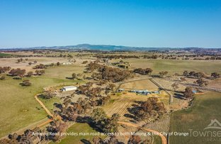 Picture of 719 Amaroo  Road, Orange NSW 2800