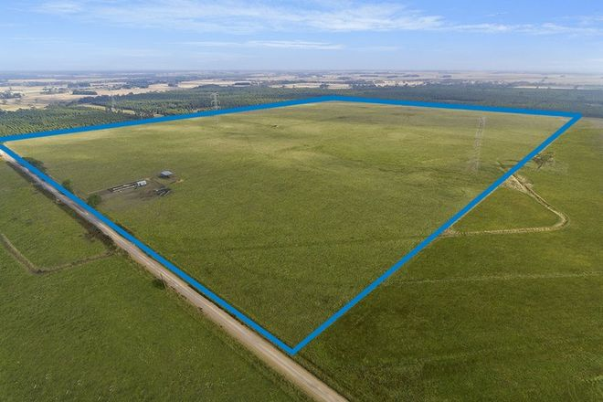 Picture of Riordans Road, ORFORD VIC 3284