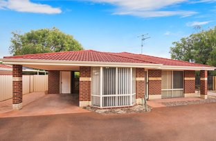 Picture of 1/288 Bussell Highway, West Busselton WA 6280
