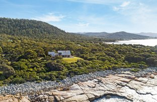 Picture of 329 Harveys Farm Road, Bicheno TAS 7215