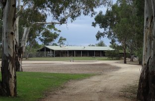Picture of 311 Ulupna Bridge Road, Ulupna VIC 3641