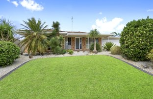 20 Porpoise Crescent, Bligh Park NSW 2756