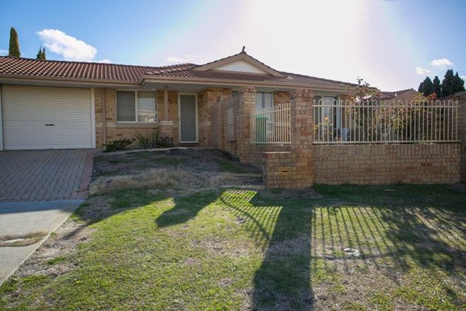 Picture of 10/41 Bluegum Road, MORLEY WA 6062