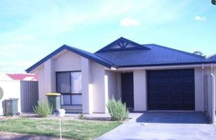 Picture of 3C Burrows Street, Willaston SA 5118