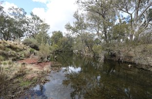 Picture of Lot 45 Sawyers Gully Road, Tenterfield NSW 2372