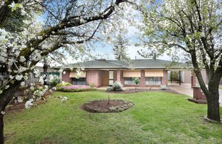 Picture of 2 Orchard Court, Nuriootpa SA 5355