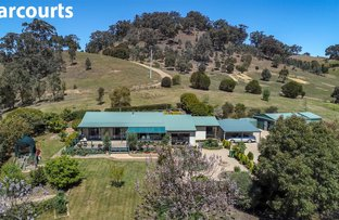 Picture of 265 Dry Creek Rd, Bonnie Doon VIC 3720