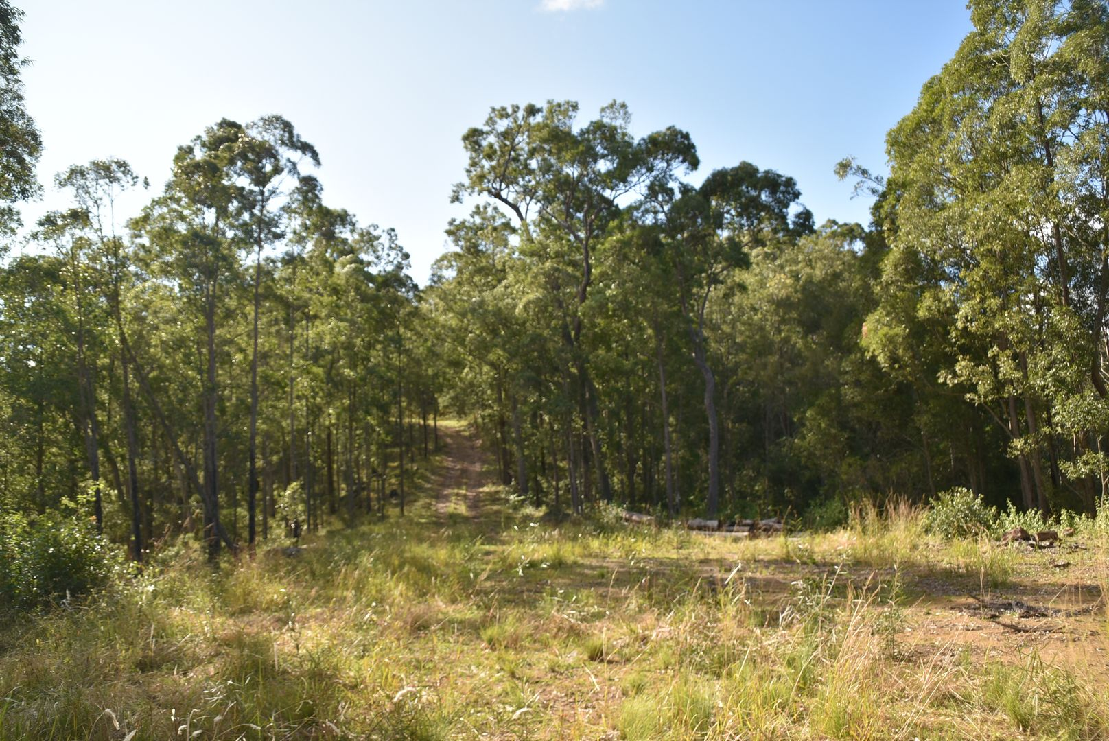177 Kyle Range Road, Warranulla NSW 2423, Image 0