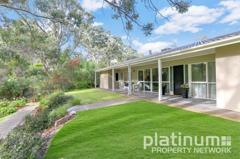 3 Fernilee Avenue, Tea Tree Gully SA 5091, Image 2