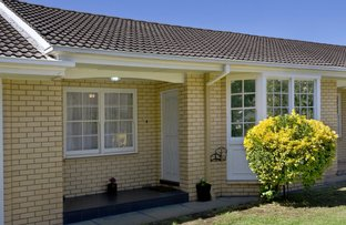 Picture of 3/6 The Grove, Woodville SA 5011
