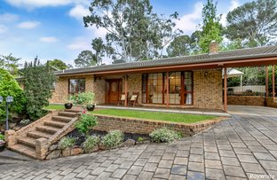 Picture of 36 Gallery Road, Highbury SA 5089