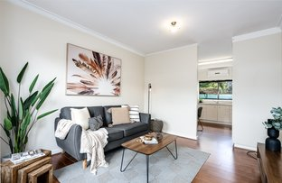 Picture of 4/31 Dudley Avenue, Daw Park SA 5041