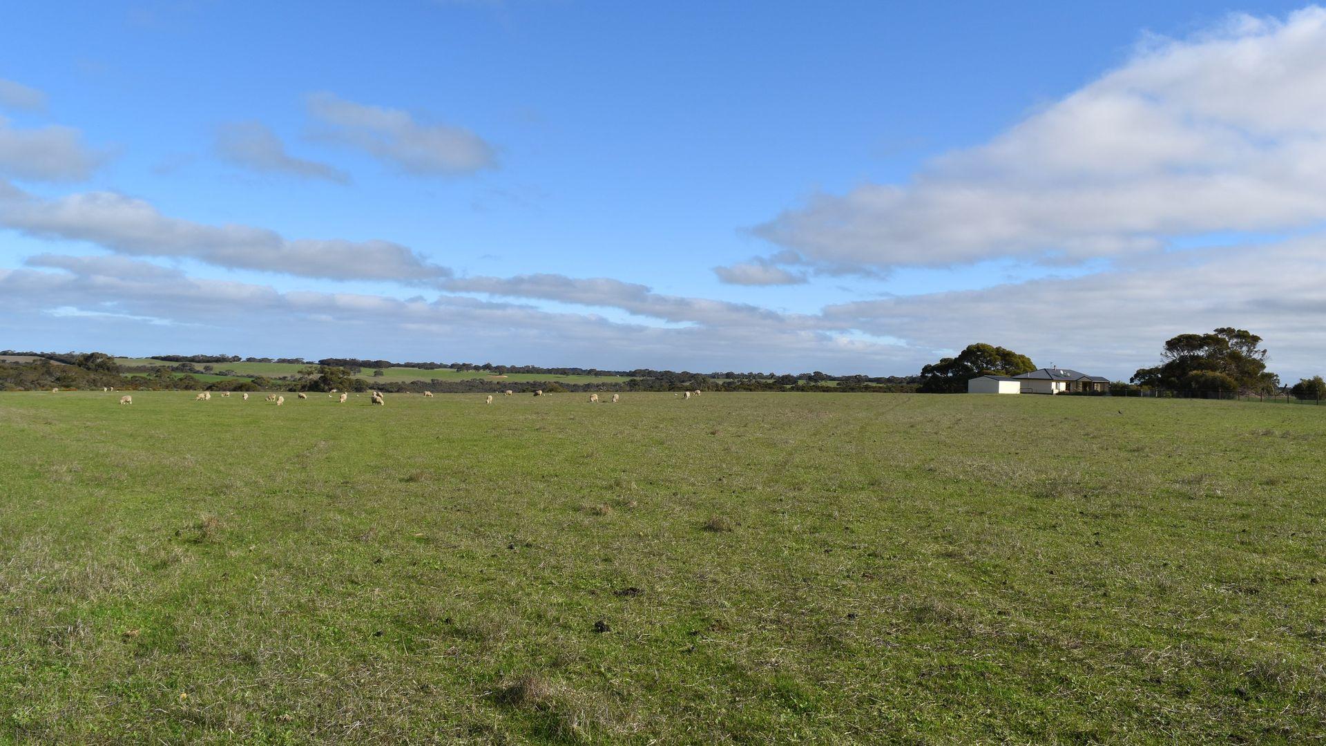 1520 Rowland Hill Highway, Macgillivray SA 5223, Image 1