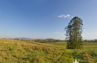 Picture of 19 Pine Tree Drive, Winya QLD 4515
