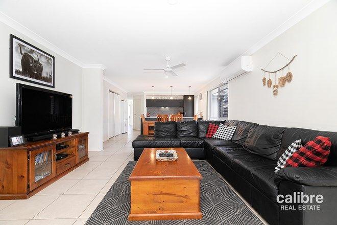 Picture of 22 Borbidge Street, NORTH LAKES QLD 4509