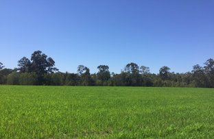 Picture of Caboolture QLD 4510