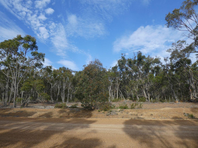 52 Northerly Retreat, Mount Barker WA 6324, Image 2