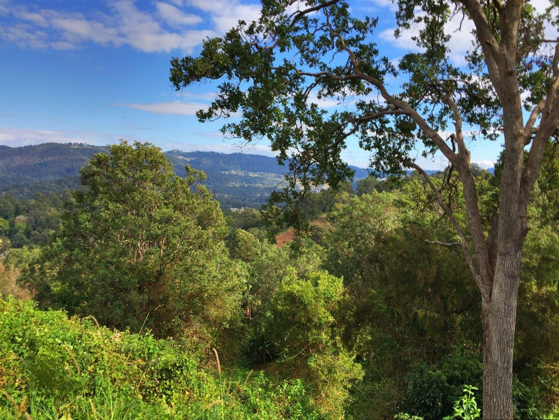 265 martin rd, Larnook NSW 2480, Image 0