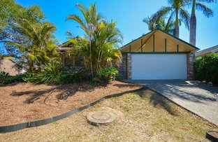 Picture of 23 Power Court, Goodna QLD 4300