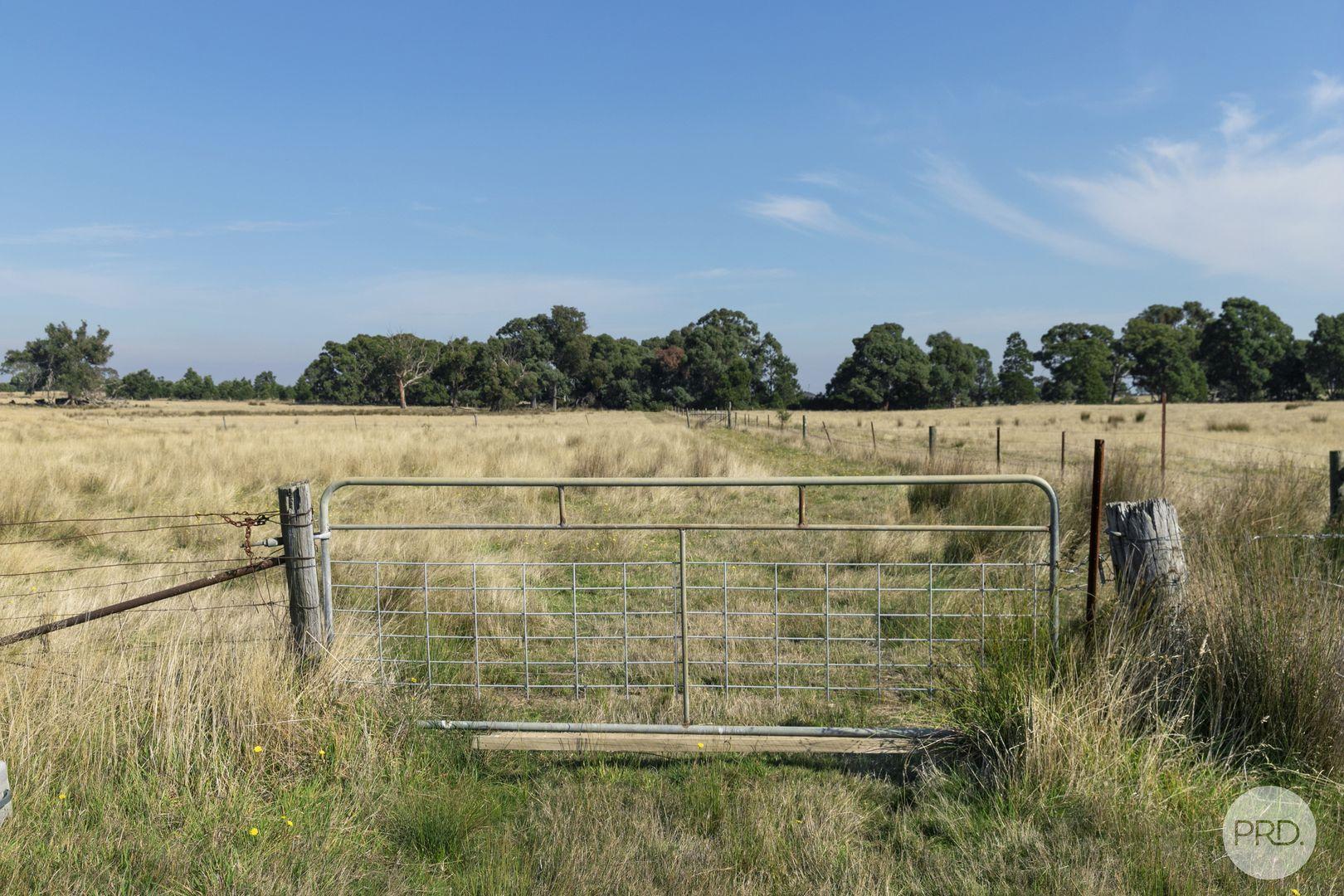 4476 Creswick-Newstead Road, Broomfield VIC 3364, Image 2