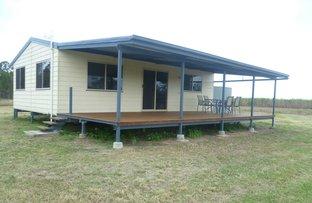 338 Foleys Road, North Gregory QLD 4660
