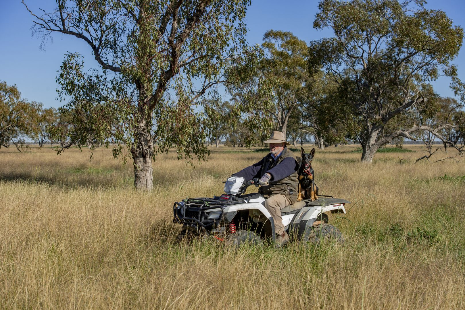 'Taralga' 13475 Mitchell Hwy, Mullengudgery NSW 2825, Image 0