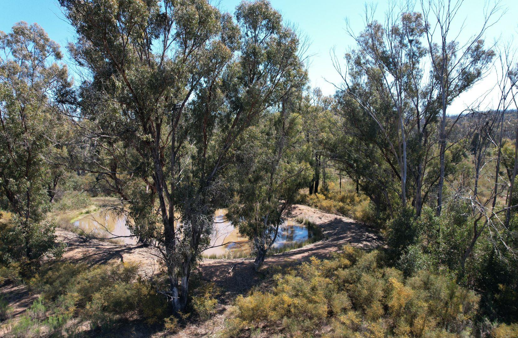 12392 GOLDEN HIGHWAY, Uarbry NSW 2329, Image 2