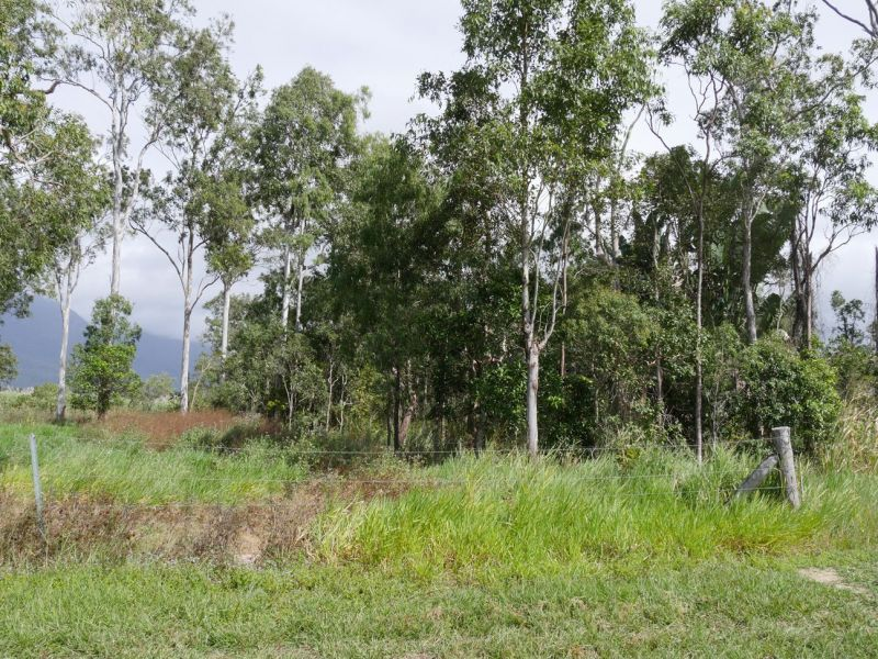 Lot 16/RP836956 Ellerbeck Road, Carruchan QLD 4816, Image 1