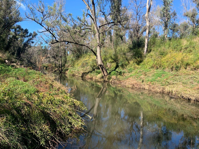 1715 Kangaroo Flat Road, Yarrowitch NSW 2354, Image 0